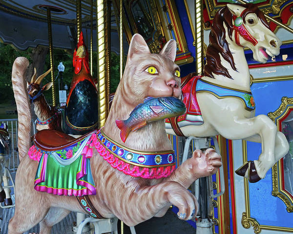 Photograph - Boston Common Merry Go Round Cat Boston Ma by Toby McGuire