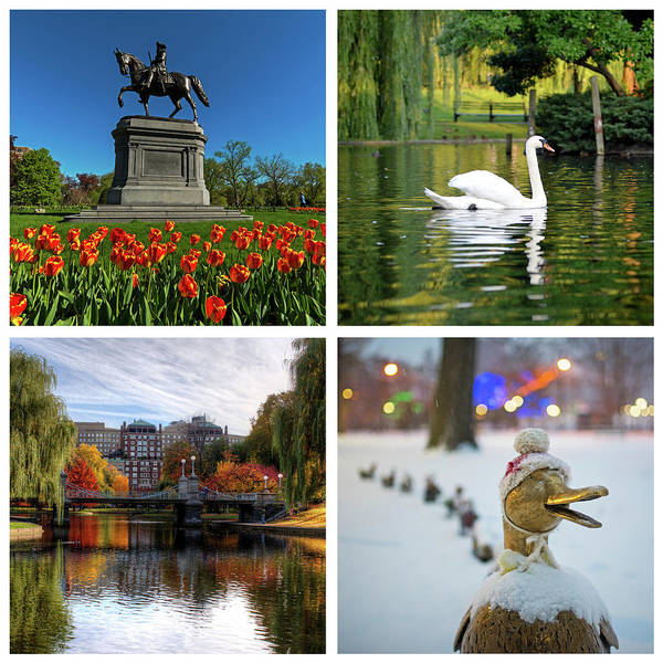 Photograph - Boston Public Garden Four Seasons Boston Ma by Toby McGuire