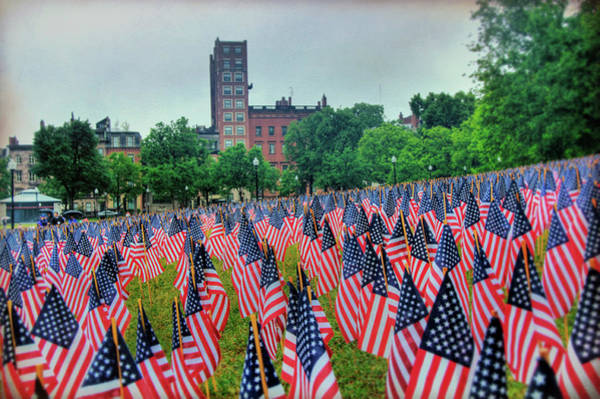 Photograph - Boston Public Garden Memorial Day Flags by Joann Vitali