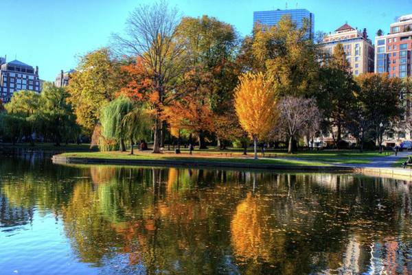 Photograph - Boston Public Garden Vibrant Fall Colors by Toby McGuire