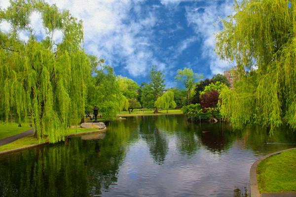 Photograph - Boston Public Gardens Park 06 by Carlos Diaz