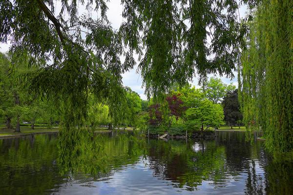 Photograph - Boston Public Gardens Park - Y2 by Carlos Diaz