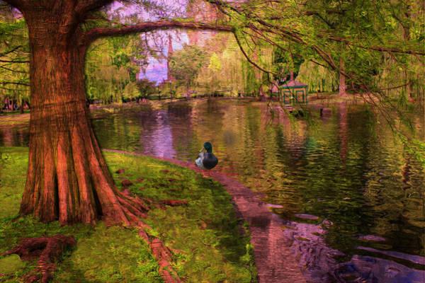Photograph - Boston Public Park Series 07 by Carlos Diaz