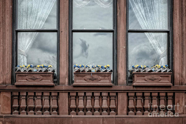 Boston Marathon Wall Art - Photograph - Boston Strong Window Boxes by Edward Fielding