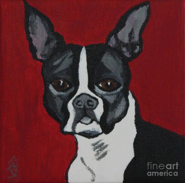 Painting - Boston Terrier by Annette M Stevenson