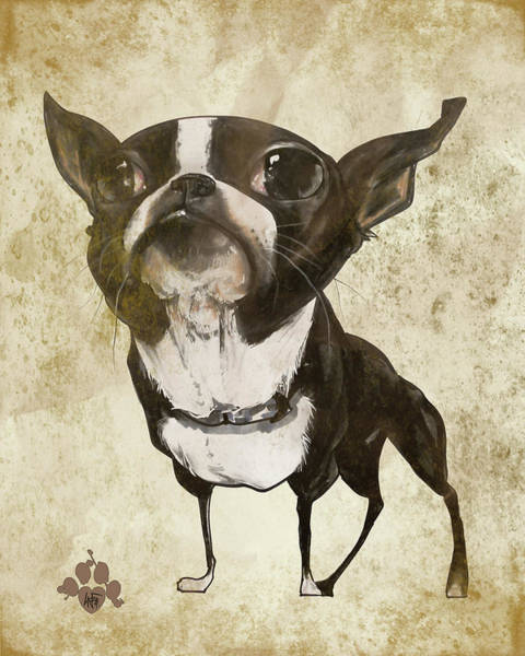 Wall Art - Drawing - Boston Terrier - Antique by John LaFree