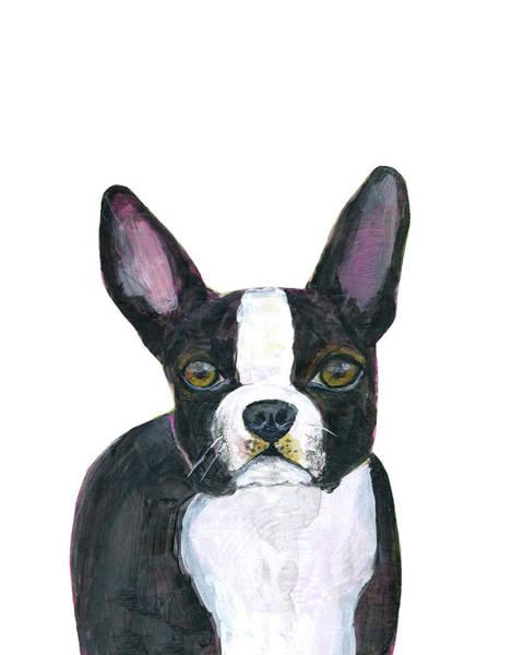 Wall Art - Painting - Boston Terrier Dog by Blenda Studio