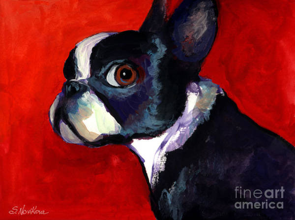 Wall Art - Painting - Boston Terrier Dog Portrait 2 by Svetlana Novikova