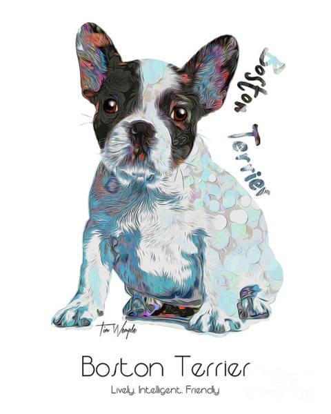 Digital Art - Boston Terrier Pop Art by Tim Wemple