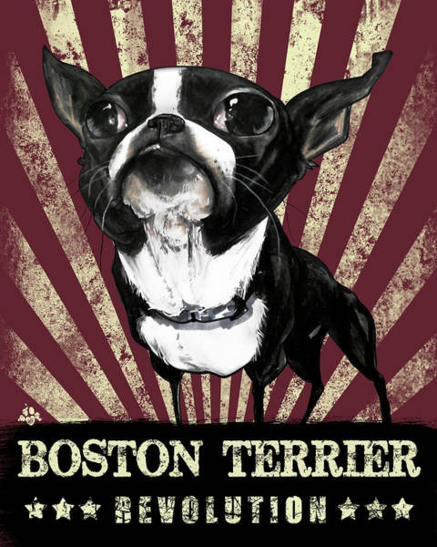 Wall Art - Drawing - Boston Terrier Revolution by John LaFree