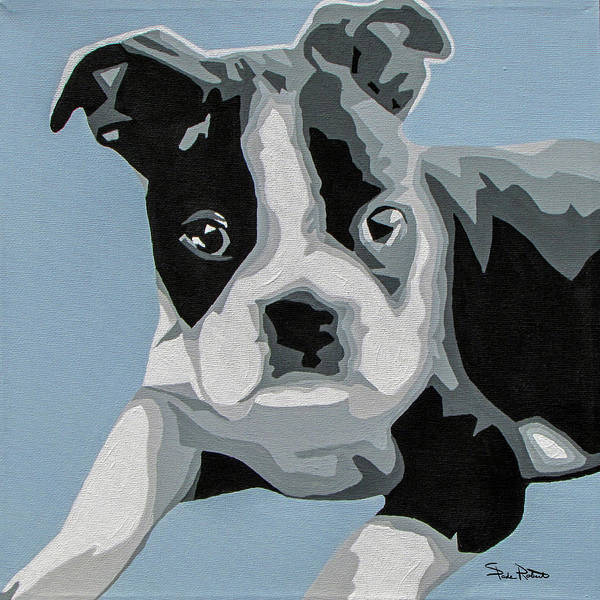 Wall Art - Painting - Boston Terrier by Slade Roberts