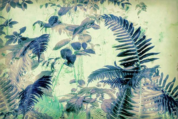 Wall Art - Mixed Media - Botanical Art - Fern by Bonnie Bruno