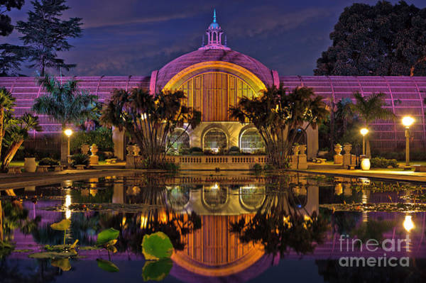 Photograph - Botanical Building At Night In Balboa Park by Sam Antonio Photography