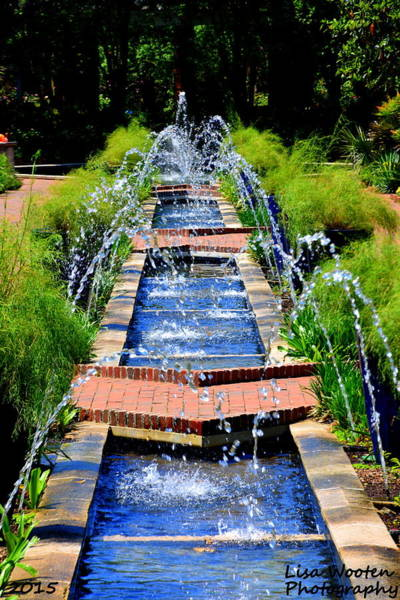 Photograph - Botanical Garden Fountain by Lisa Wooten