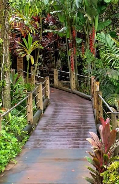 Photograph - Botanical Garden Pathway by Pamela Walton