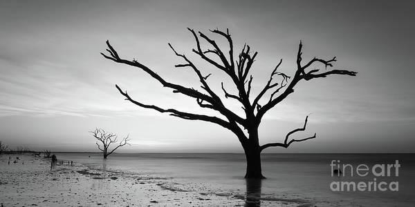 Wall Art - Photograph - Botany Bay Beach At Dawn Bw  by Michael Ver Sprill