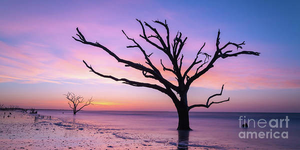 Wall Art - Photograph - Botany Bay Beach At Dawn  by Michael Ver Sprill