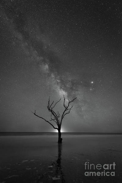 Wall Art - Photograph - Botany Bay Plantation Milky Way Bw by Michael Ver Sprill