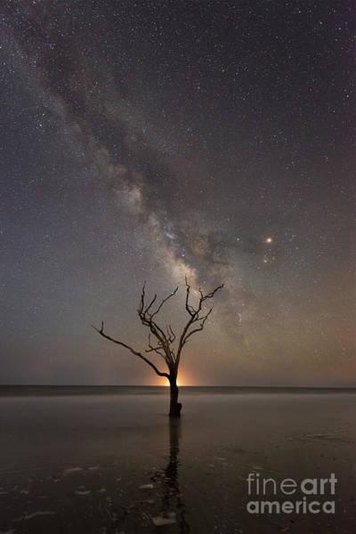 Wall Art - Photograph - Botany Bay Plantation Milky Way  by Michael Ver Sprill