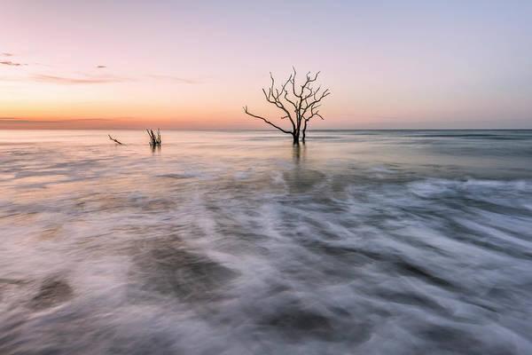 Photograph - Botany Sunrise by Jon Glaser