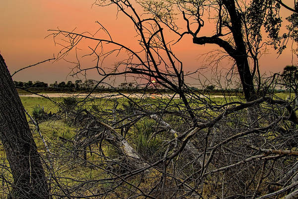 Photograph - Botswana Sunset by Kay Brewer