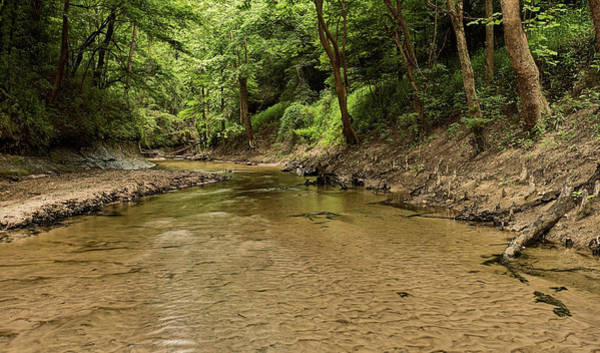 Photograph - Bottle Creek by JC Findley