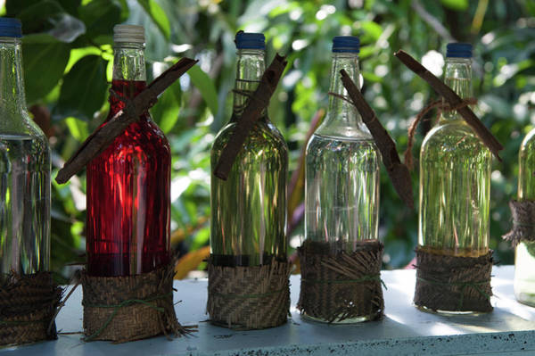Photograph - Bottles In A Row No. 3 by Helen Northcott