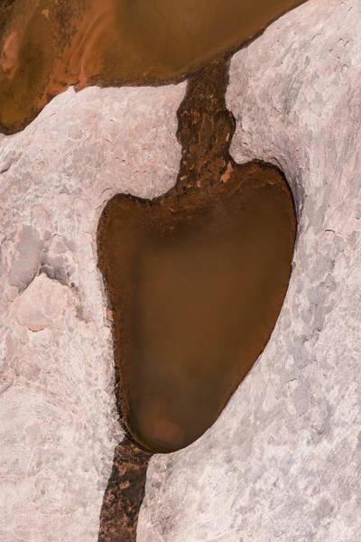 Photograph - Bottom Of My Heart by Deborah Hughes
