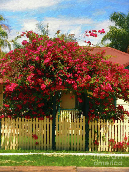 Wall Art - Photograph - Bougainvillea Cottage By Kaye Menner by Kaye Menner