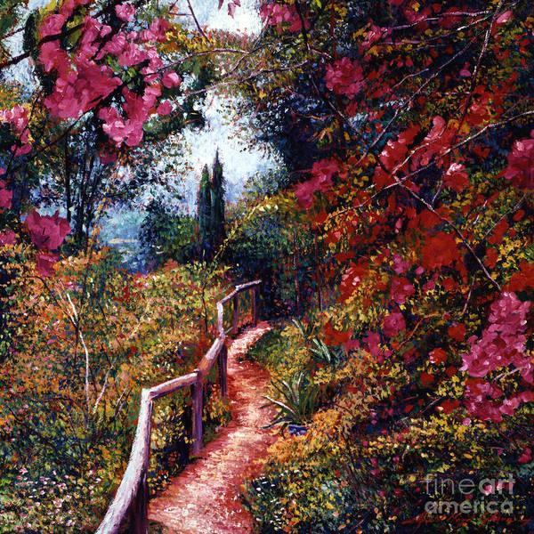 Bougainvillea Wall Art - Painting - Bougainvillea Path Tuscany by David Lloyd Glover