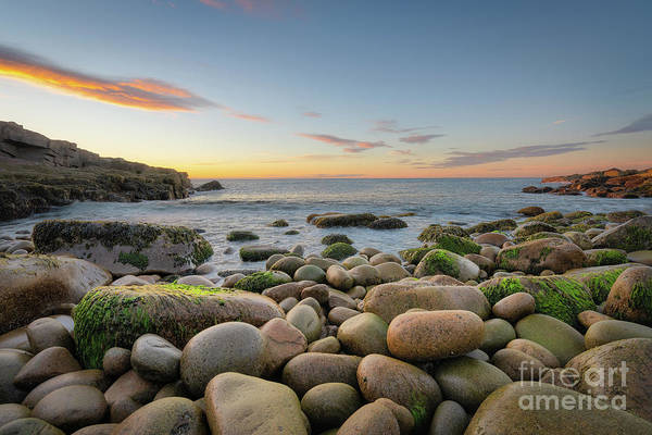 Photograph - Boulder Beach Sunrise  by Michael Ver Sprill
