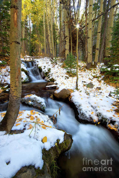Wall Art - Photograph - Boulder Brook - Rocky Mountain National Park by Ronda Kimbrow