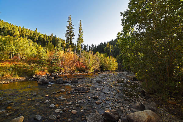 Boulder Colorado Canyon Creek Fall Foliage Art Print