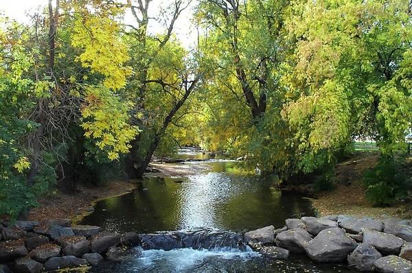 Boulder Creek Tumbling Through Early Fall Foliage Art Print