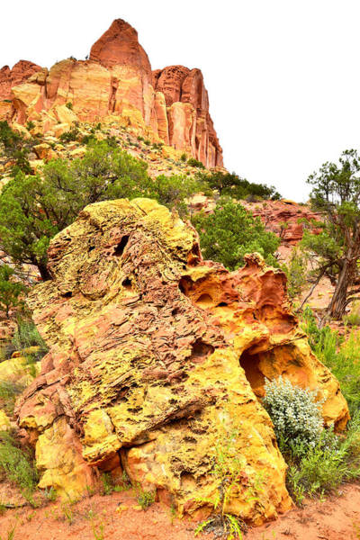 Photograph - Boulder-notom Road by Ray Mathis