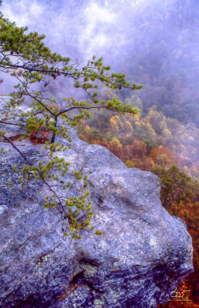 Photograph - Boulder Overlook by Sam Davis Johnson