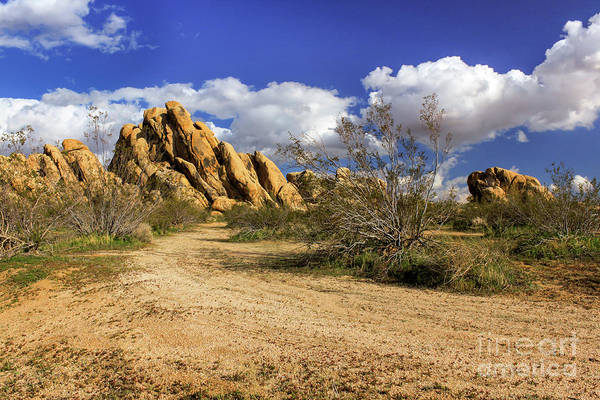 Photograph - Boulders At Apple Valley by James Eddy