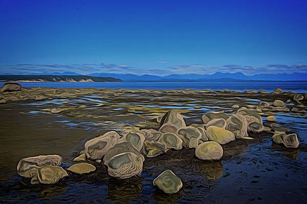 Digital Art - Boulders At Low Tide by Richard Farrington