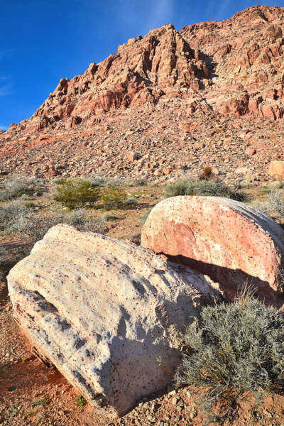 Photograph - Boulders In Calico Basin by Ray Mathis