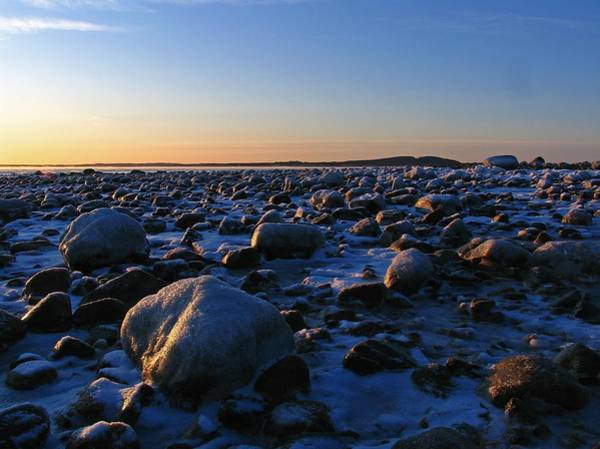Photograph - Boulders On Plum Island by Juergen Roth