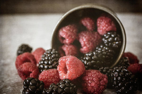 Photograph - Bountiful Berries by Teresa Wilson