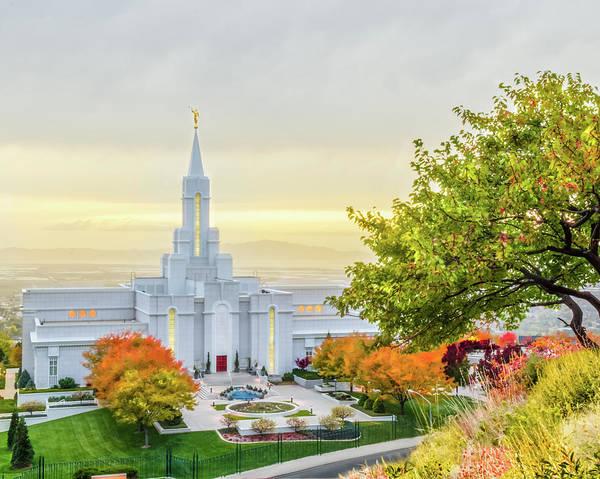 Mormon Photograph - Bountiful Temple Tree by La Rae  Roberts