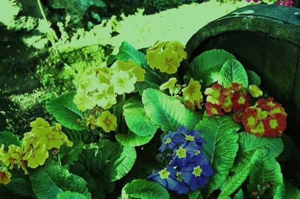 Photograph - Bouquet by HweeYen Ong