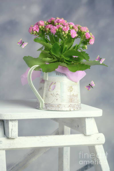 Wall Art - Photograph - Bouquet In Watering Can by Amanda Elwell