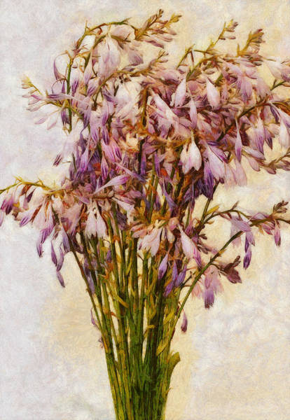 Digital Art - Bouquet Of Hostas by JGracey Stinson