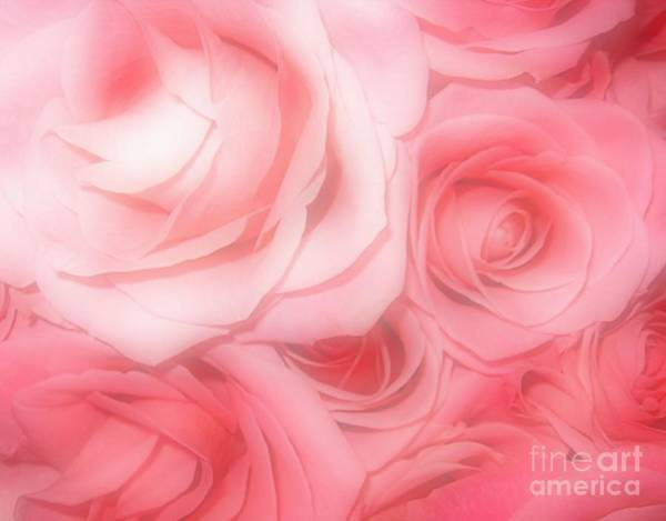 Photograph - Bouquet Of Pink Roses With Soft Touch Effect by Rose Santuci-Sofranko