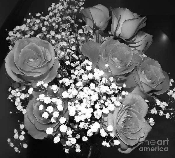 Photograph - Bouquet Of Roses And Babys Breath Soft Black And White by Rose Santuci-Sofranko