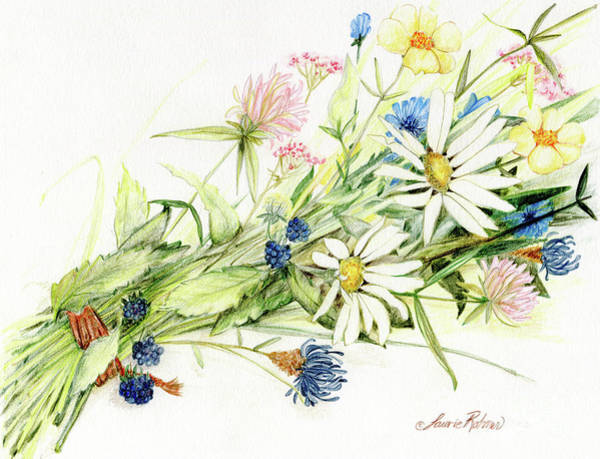 Drawing - Bouquet Of Wildflowers by Laurie Rohner