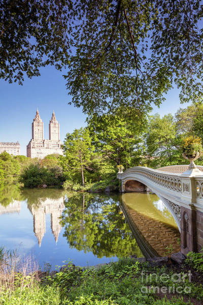 Wall Art - Photograph - Bow Bridge In Spring, Central Park, Manhattan, New York, Usa by Matteo Colombo