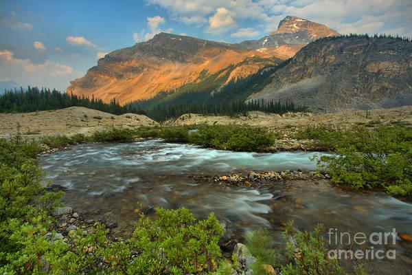 Photograph - Bow Glacier Falls Trail by Adam Jewell